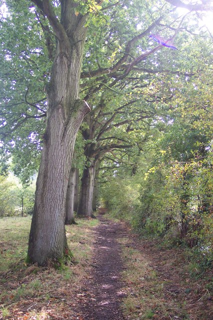 The High Weald Landscape Trail leaves Crabtree Farm