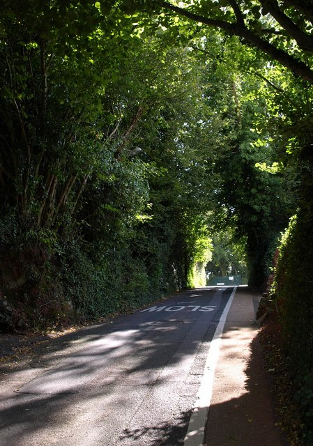 Dairy Hill, Torquay