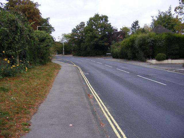 B1009 Baddow Road