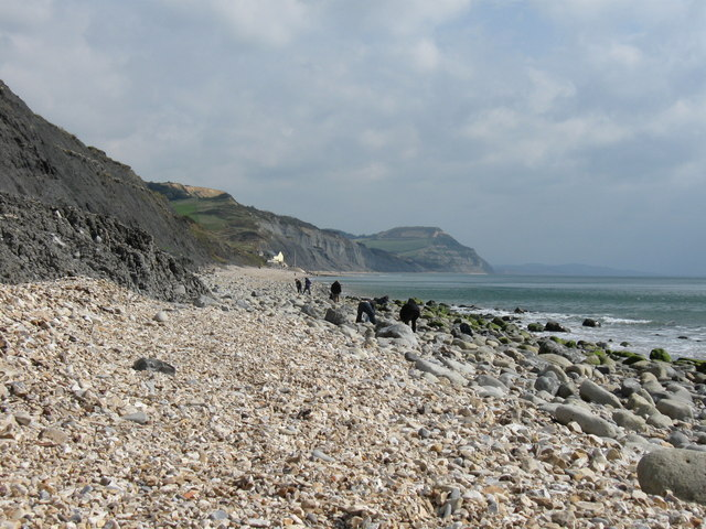 The fossil beach at Charmouth, Dorset