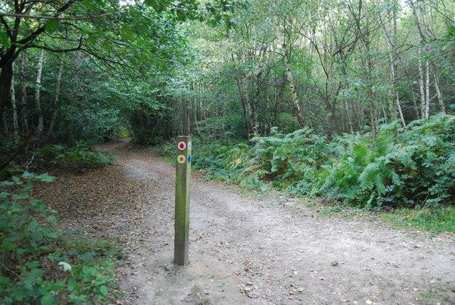 Waymarker, Toy's Hill