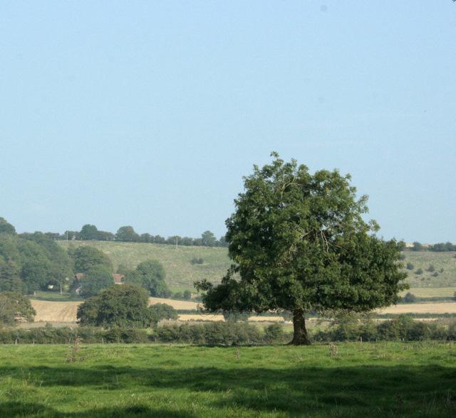2009 : East from the B4465 near Codrington