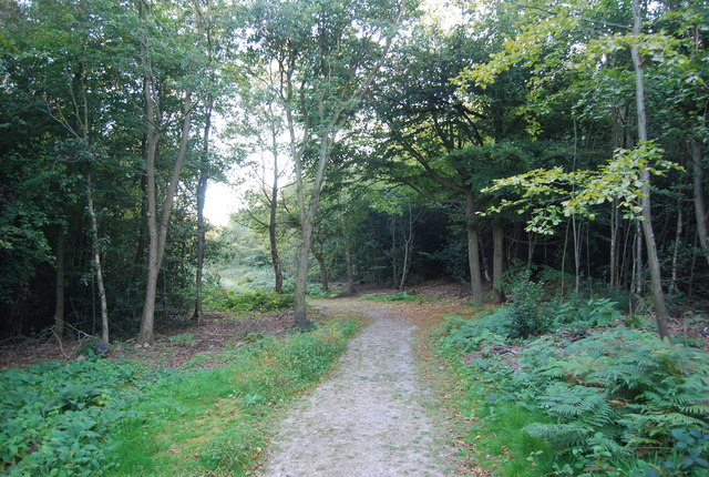 Greensand Way, Toy's Hill