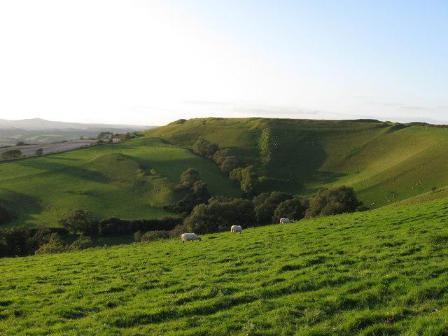 Eggardon Hill Fort (Eggardun).   Dorset