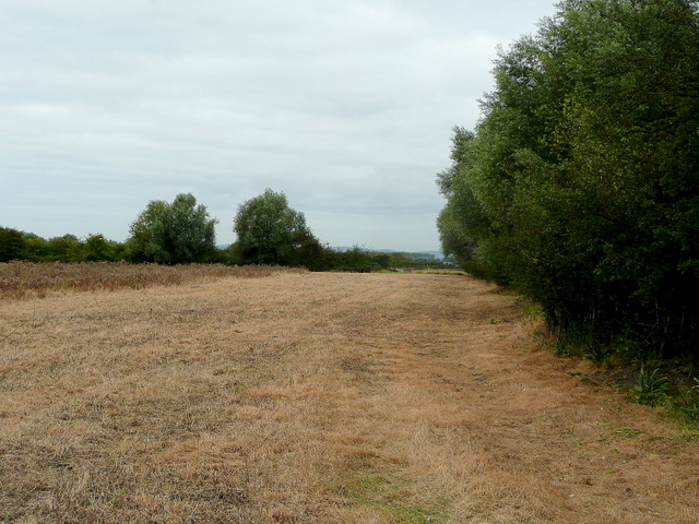 Footpath along this field edge