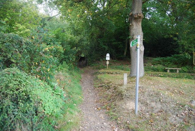 Bridleway, Toy's Hill