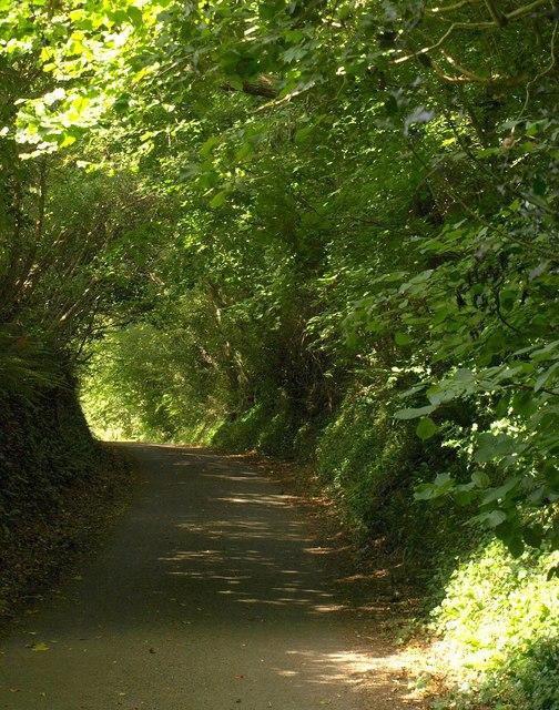 Lopen Lane