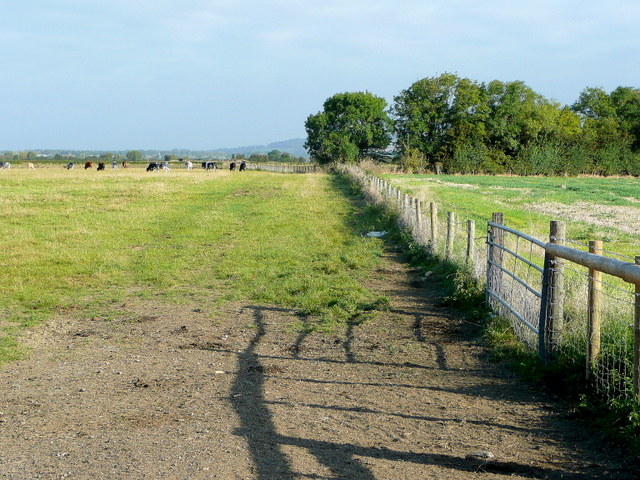 Pasture land north of Bozard's Lane