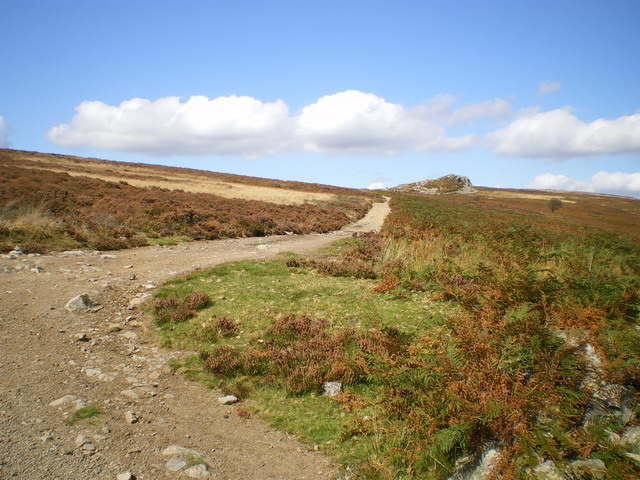 Stiperstones bridleway above The Hollies farm