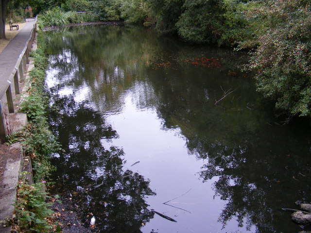 Pond at the Recreation Ground