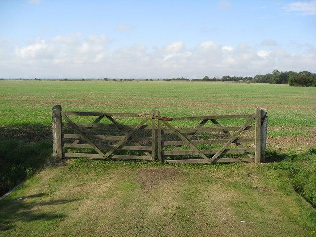 Theddlethorpe - Farmland opposite All Saints Church