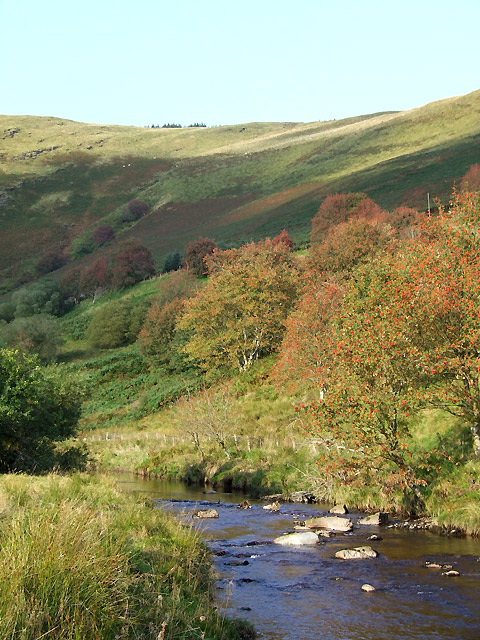 Early autumn colours in Cwm Tywi, Powys