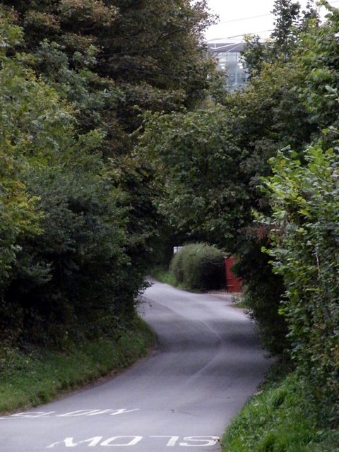 Hyatts Wood Road