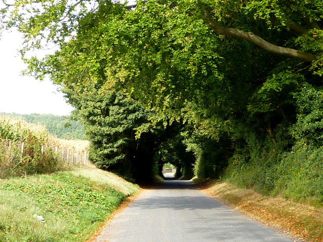 The road to Bonnington  Farm