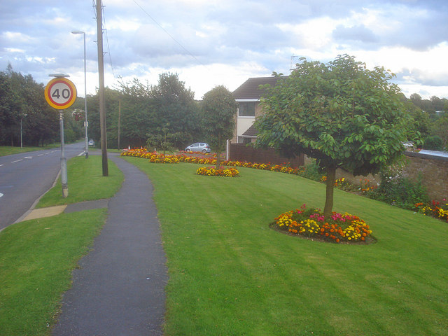 Colourful verge on Pisca Lane