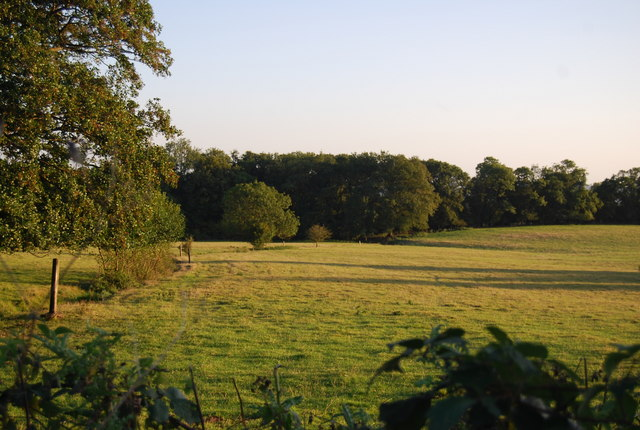 Large field, Puddledock Lane