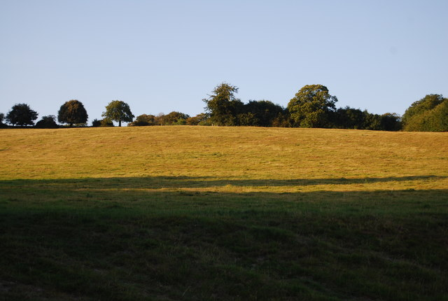 Field by Puddledock Lane