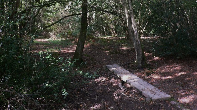 Footpath on Stedham Marsh