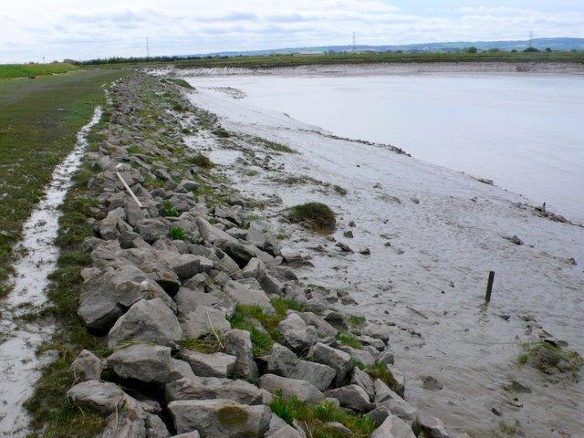 River Parrett near Dunball