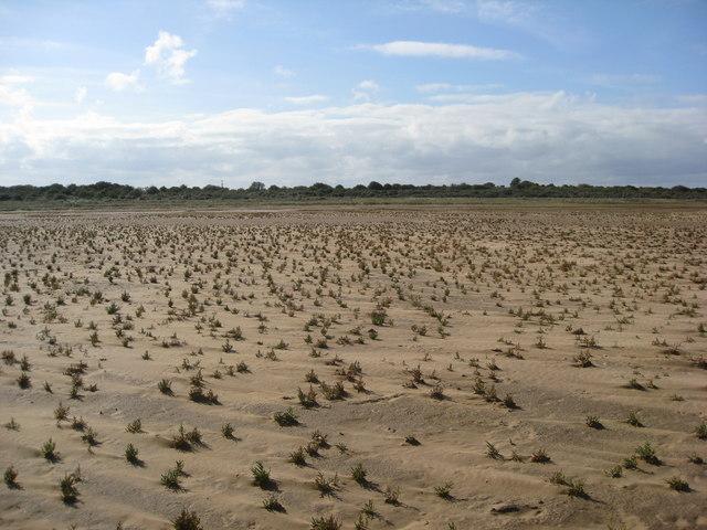 Saltfleetby - Theddlethorpe Dunes NNR