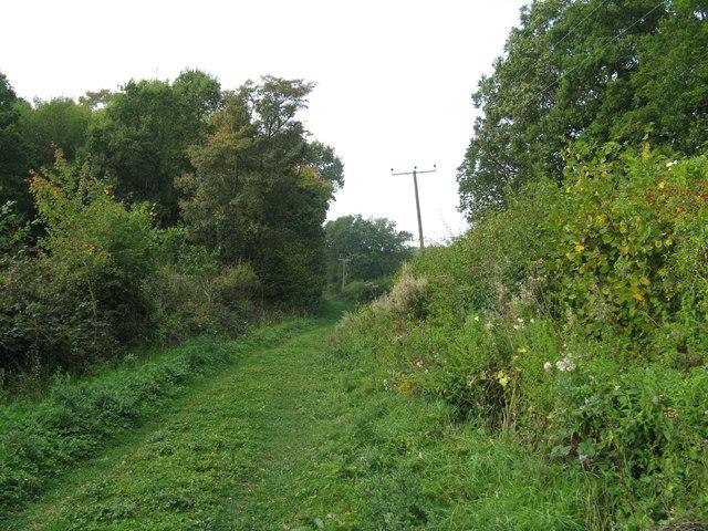 Power lines beside bridleway west of Greentree Farm