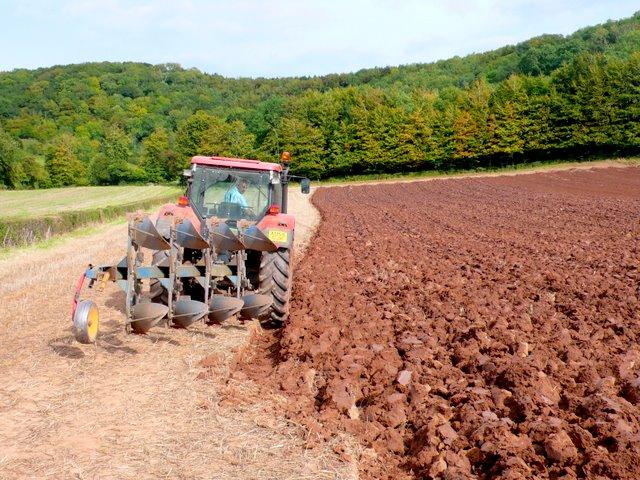 Ploughing near Compton Dundon