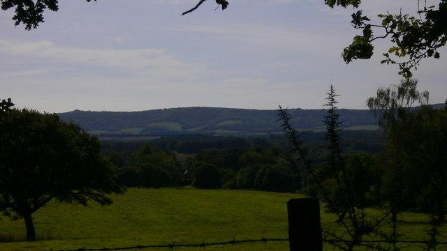 Field near Tentworth