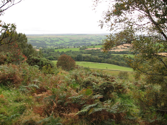 View from Heatherley Clough, Tow Law