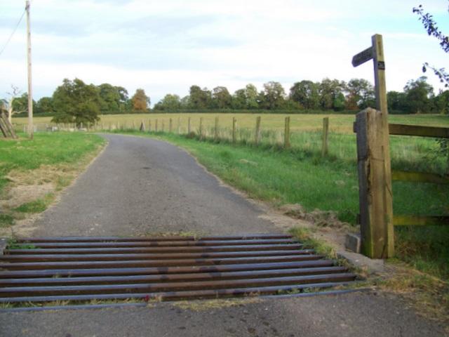 Footpath, Berkley Marsh
