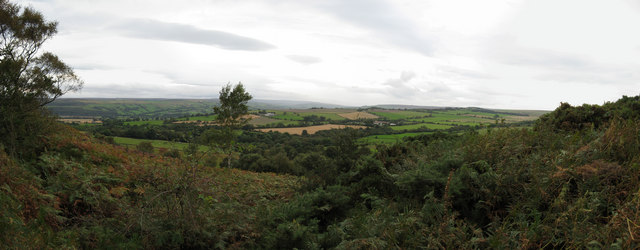 Panorama from Heatherley Clough, Tow Law