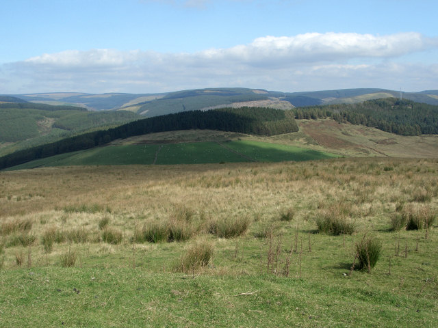 The northern slopes of Foel Trawsnant with a view to the north east