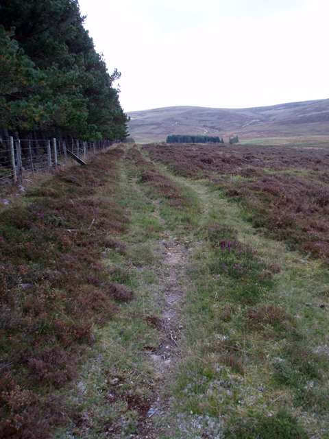 Track SW of Tom Liath