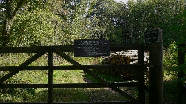 Gateway into Hammer Wood