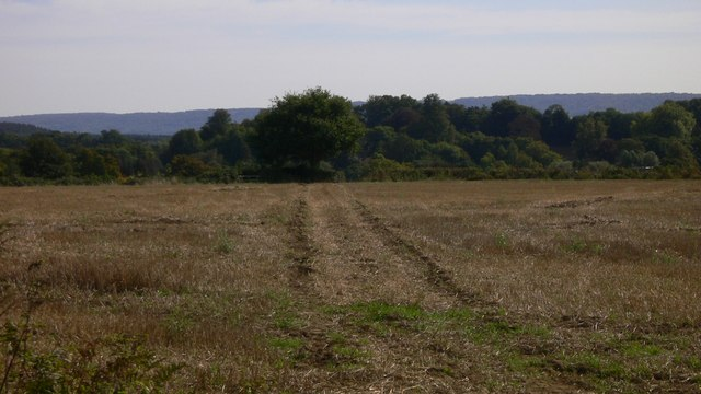 Footpath across field near Iping