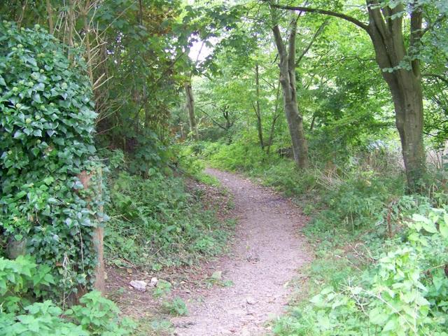 Footpath, Pilton