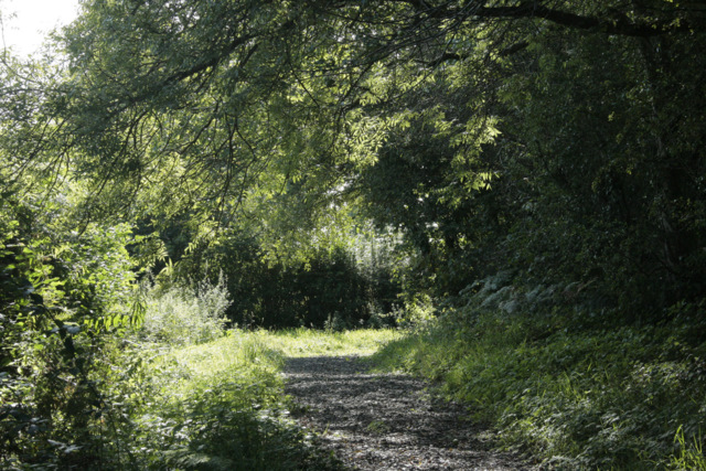 2009 : Footpath at the end of Burnthouse Drove