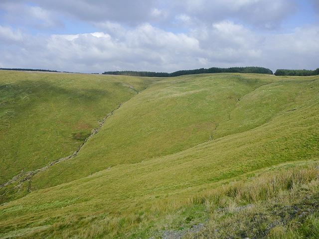 Cwm Tadarn, Tywi Forest, Powys