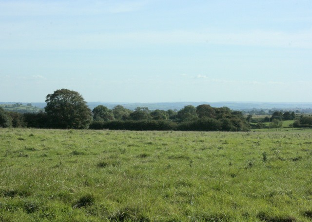 2009 : Pasture on the Mendips