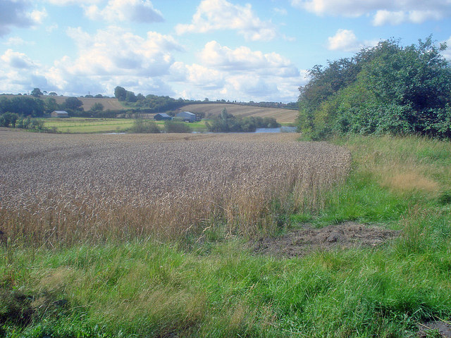 Arable land and pond near Lowlands Farm