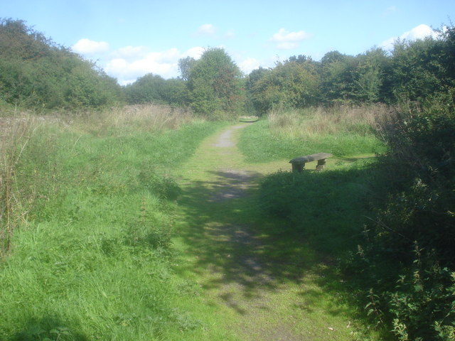 Path junction near Oakthorpe Colliery