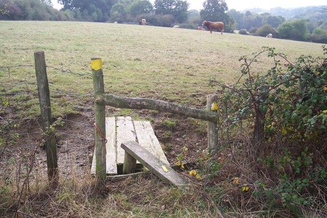Broken stile and ditch footbridge