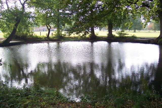 Pond in Swattenden Centre