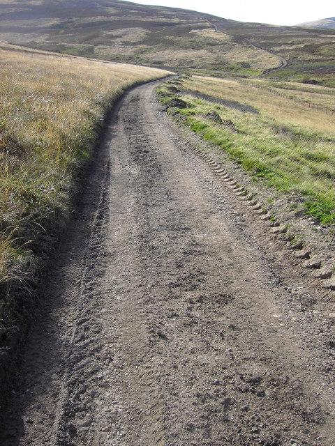The Landrover track near Nathro lodge