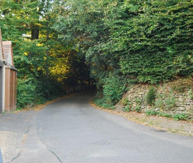 Froghole Lane