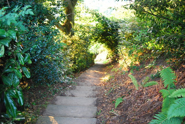Steps, Footpath to Crockham Hill