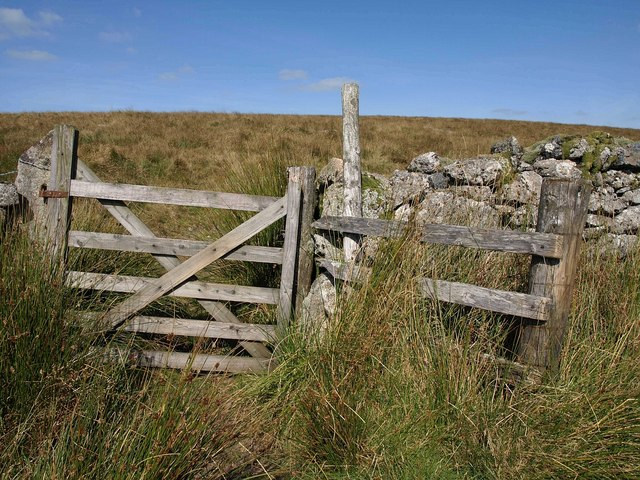 Gate, Swincombe valley