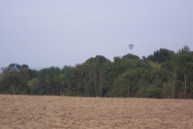Balloon over Foxearth Wood