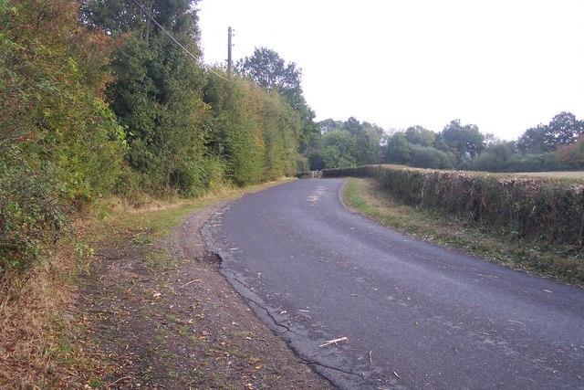 Digdog Lane