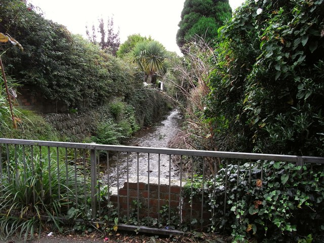 East Wilder Brook approaching the footpath between St. Brannock's Road and Horne Road