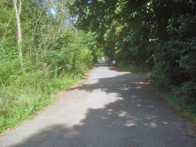 Willesley Wood Side